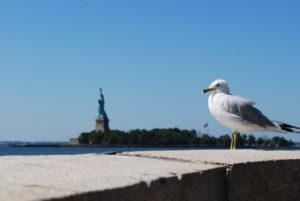 vue sur la statue de la liberté new york