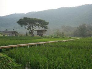road trip chiang mai