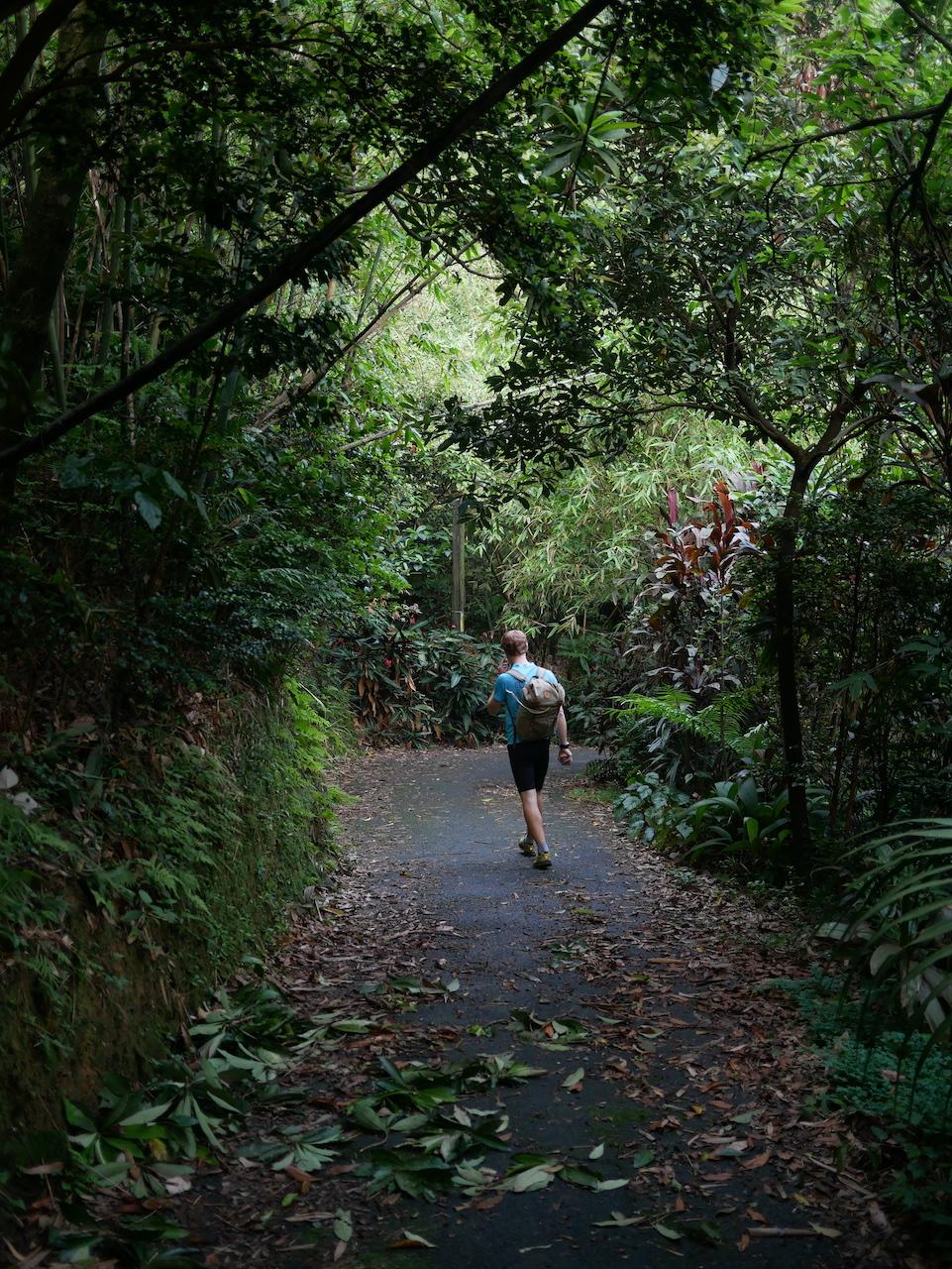 marcher à taiwan