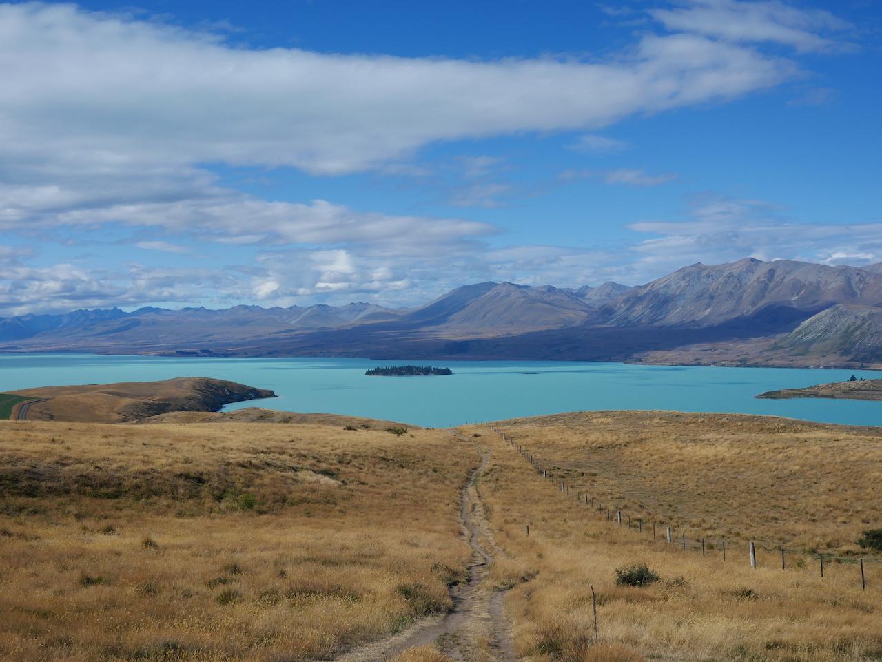Sur l'île du Sud de la Nouvelle Zélande #5 : le Lac Tekapo