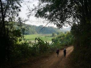 trek a chiang rai